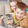159 Animal Trivia Questions & Answers [for Kids & Adults]