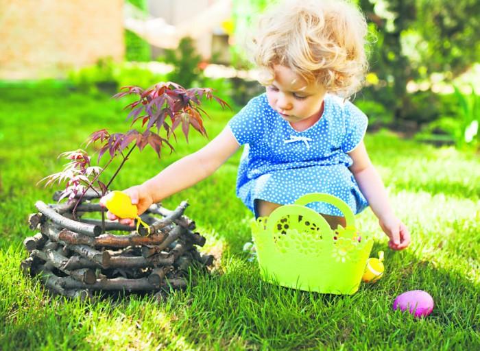 Easter Egg Hunt Real Hard-Boiled Eggs