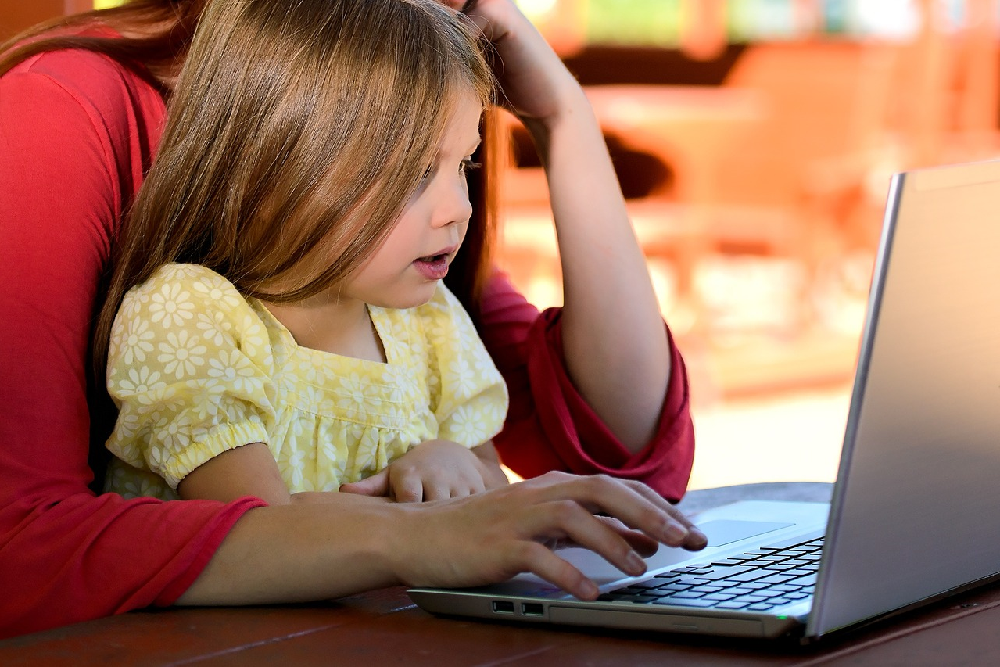 Homeschooling Cautions and Considerations