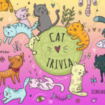 101 Great Cat Trivia Questions & Answers (+Facts)